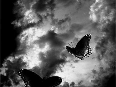 Nuvole-e-Farfalle.....jpg